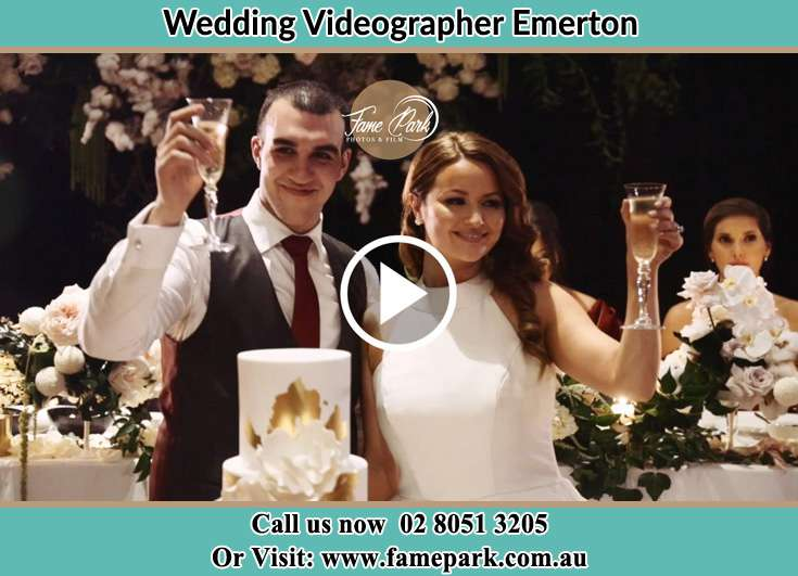 Bride and Groom making a toast at the reception Emerton NSW 2770