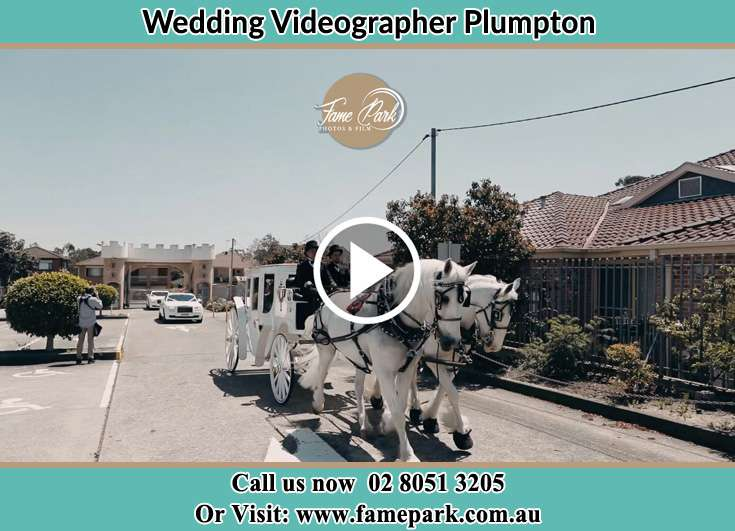 Bride's wedding carriage Plumpton NSW 2761